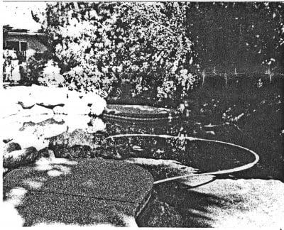 SYLVAN GLEN GRACES STEWART ROAD MANOR HOUSE [WHITE LOOP NOT ALIVE]